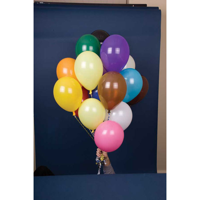 H119 10 Inch Balloons