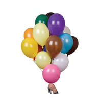 H119 12 Inch Balloons