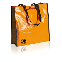 H101 Biodegradable Shopping Bag