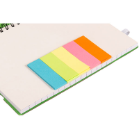H028 Lined Notebook with Tabs and Rule